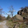 Rundwanderweg Kloster Heisterbach 15