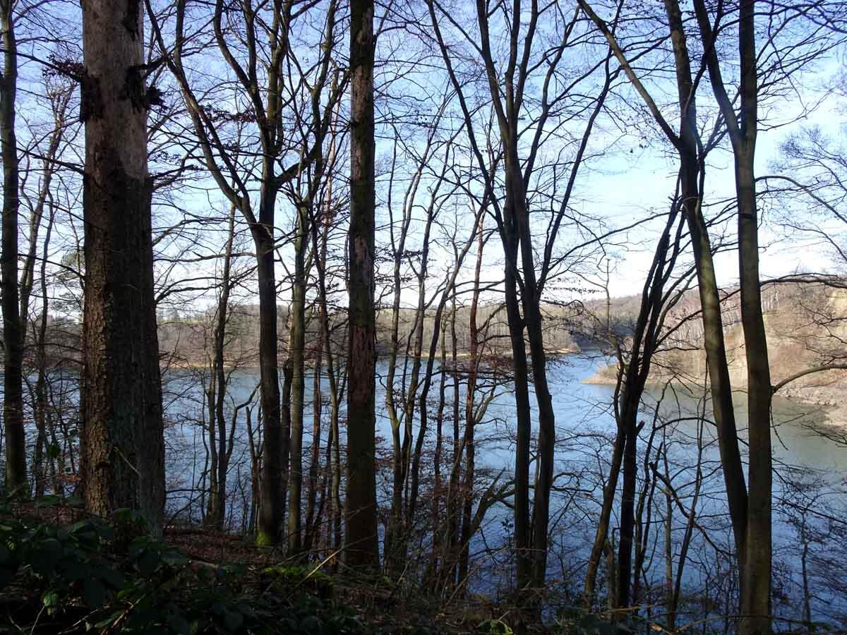 Rundwanderweg Wahnbachtalsperre 1