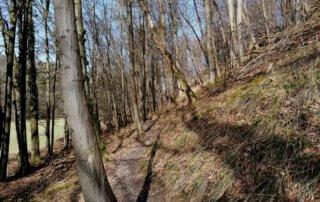 Rundweg Wenigerbach und Naafbachtal 2