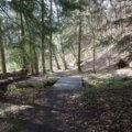 Rundwanderweg Limbach Klamm 42