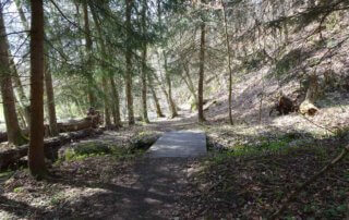 Rundwanderweg Limbach Klamm 38