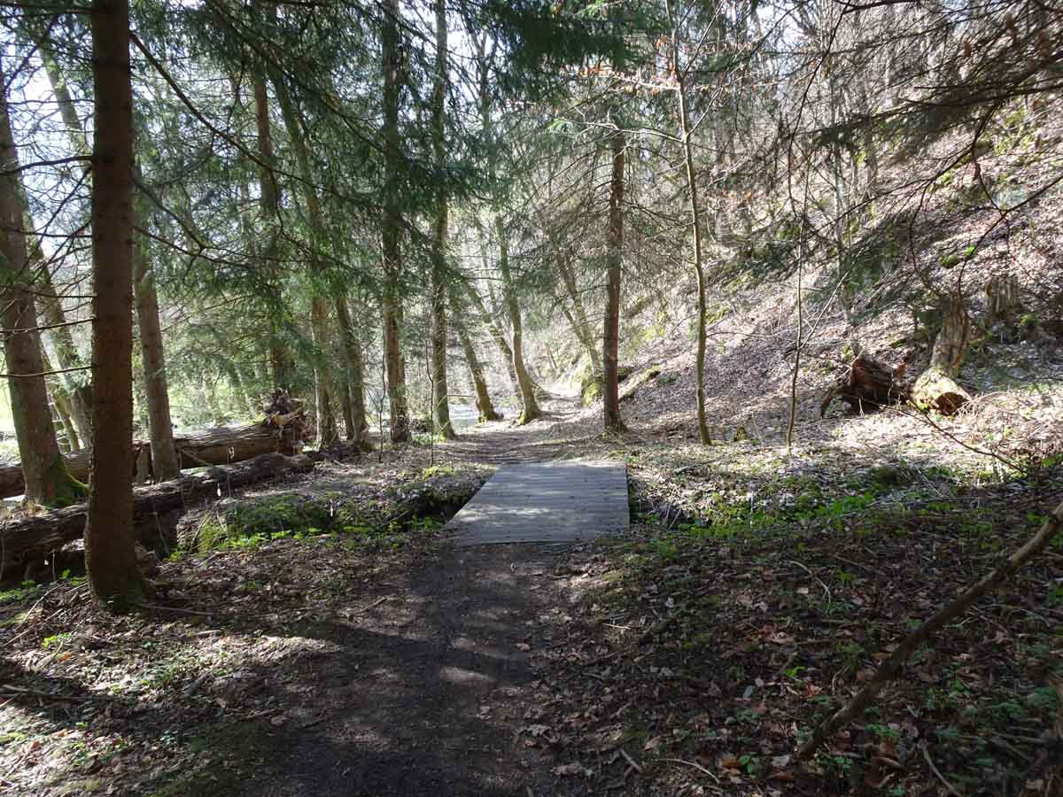 Rundwanderweg Limbach Klamm 1