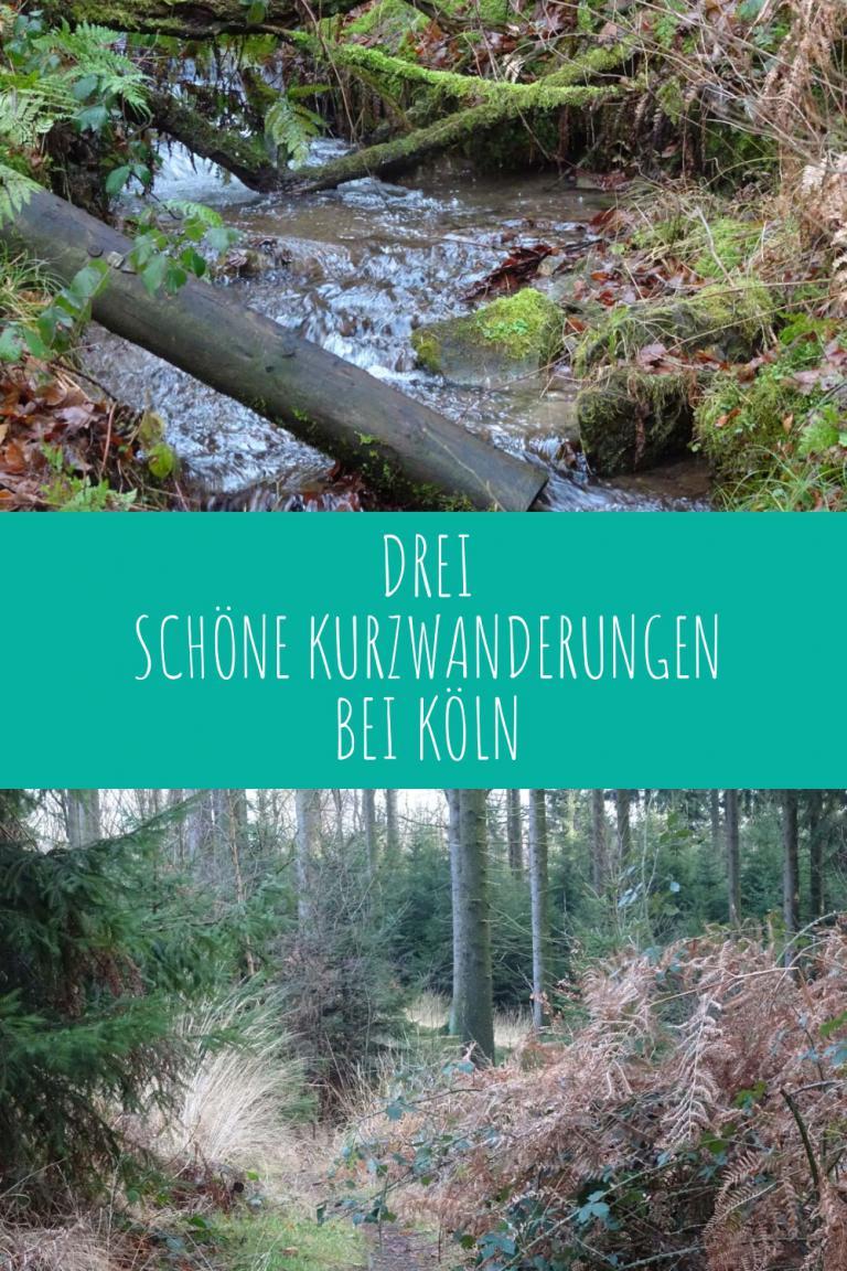 Drei schöne Kurzwanderungen in der Nähe von Köln