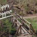 Round up Eifel: 7 Blogger verraten ihre Lieblingswanderwege 9
