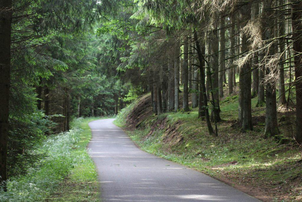 Mit dem Fahrrad von Aachen nach Trier 8
