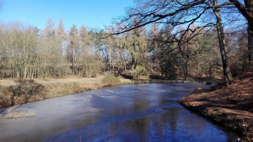 Wandern Wahner Heide Teich