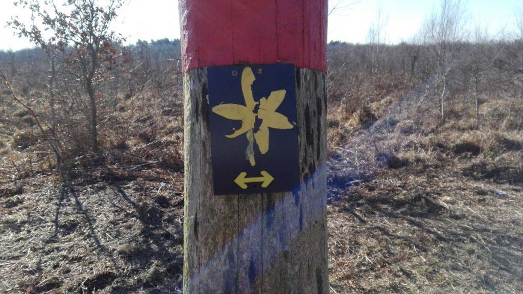 Wandern Wahner Heide Wegkennzeichnung