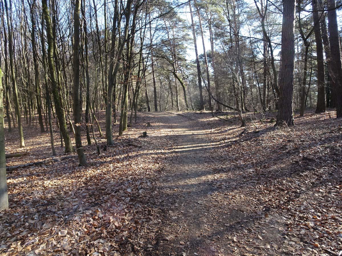 Wahner Heide und Aggerauen Weg