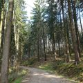 Liederweg Lindlar 7