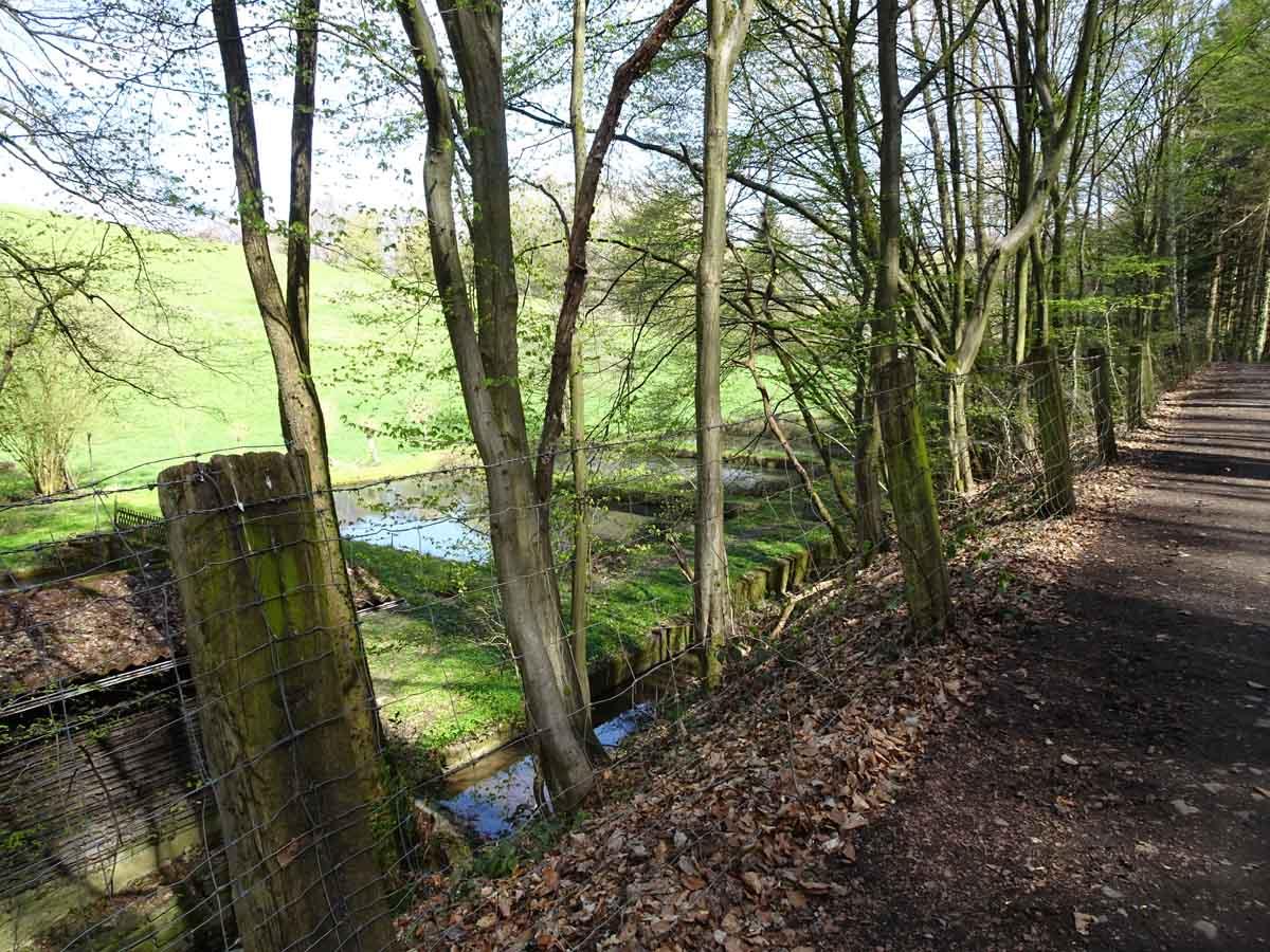 Waldweg Bauernhofweg