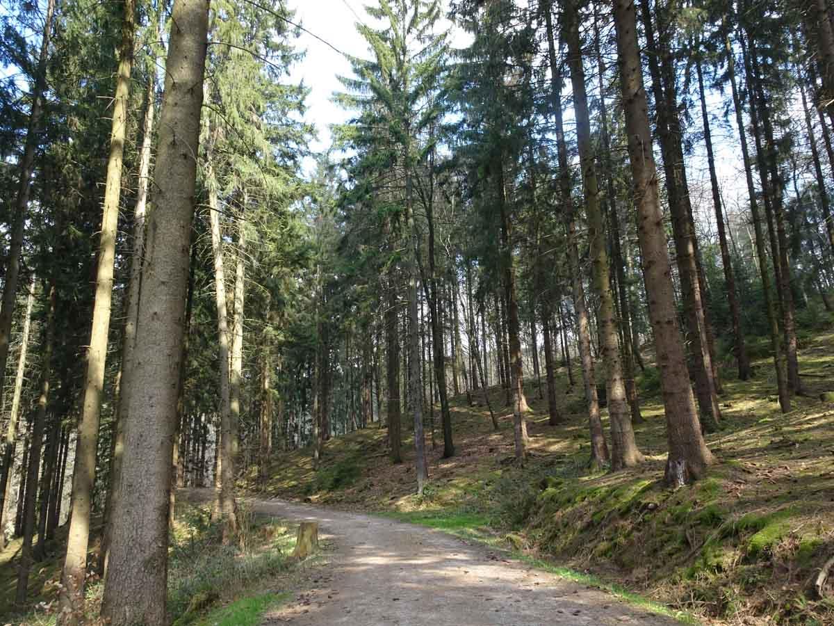 Liederweg Lindlar 1