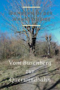 Wandern in der Wahner Heide: Vom Busenberg zur Querwindbahn