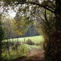 Wanderung Bärbroich