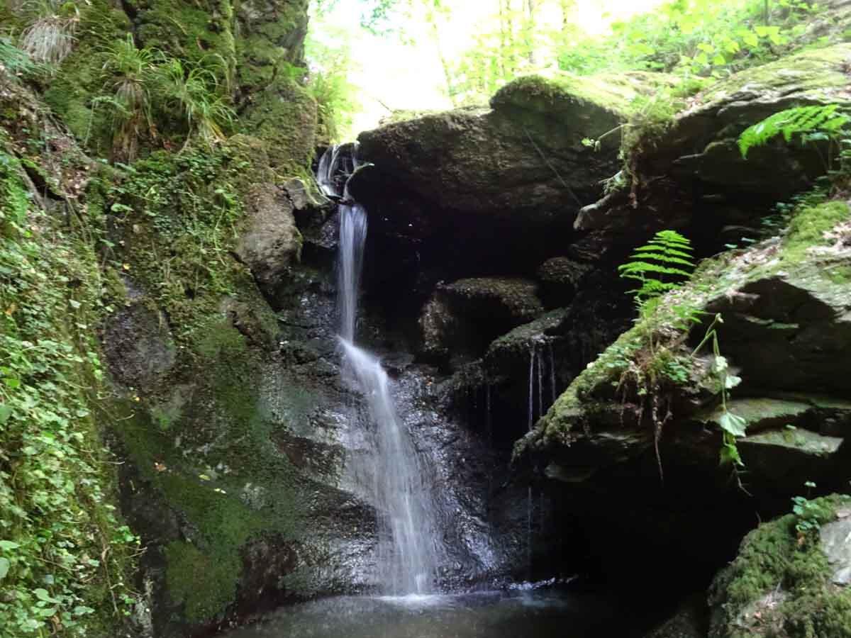 Wanderung durch die wildromantische Baybachklamm 4