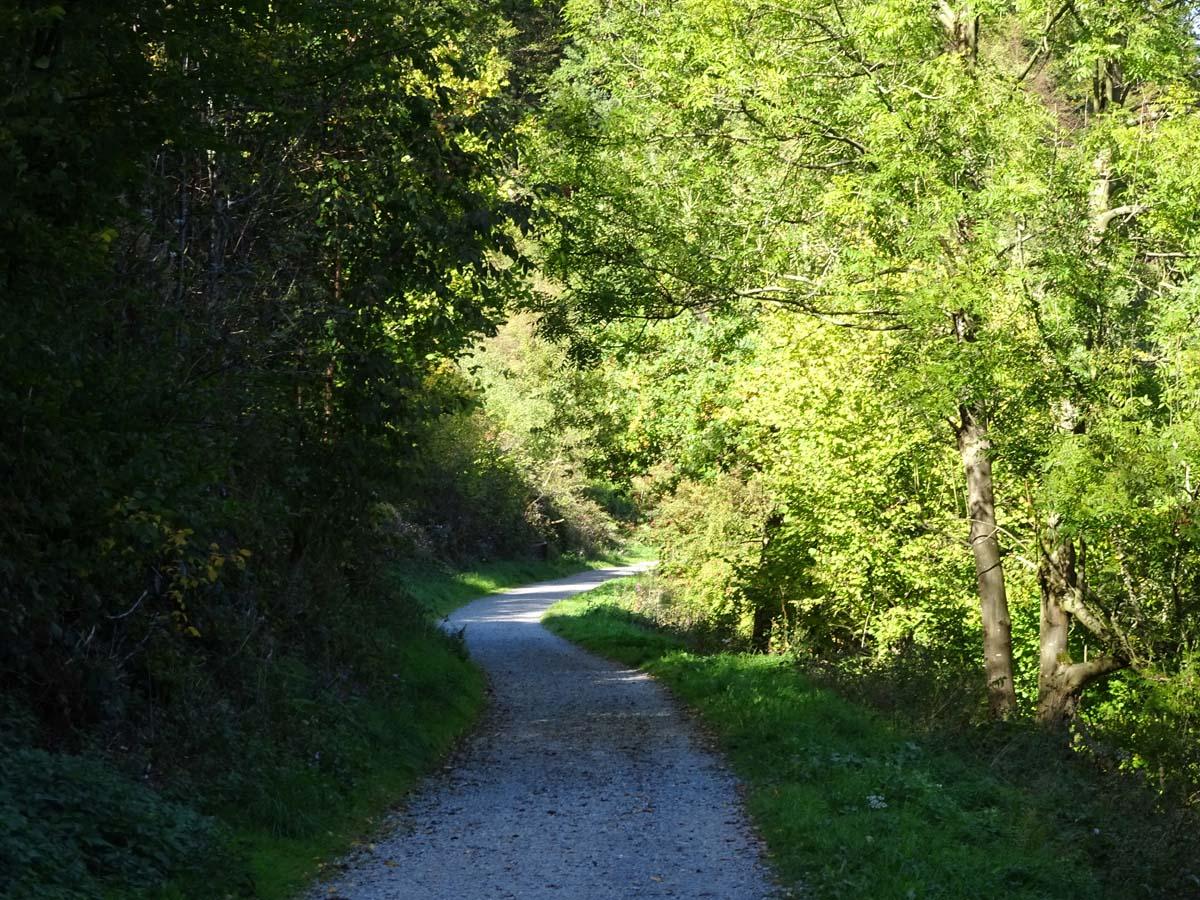 Wasserweg 3
