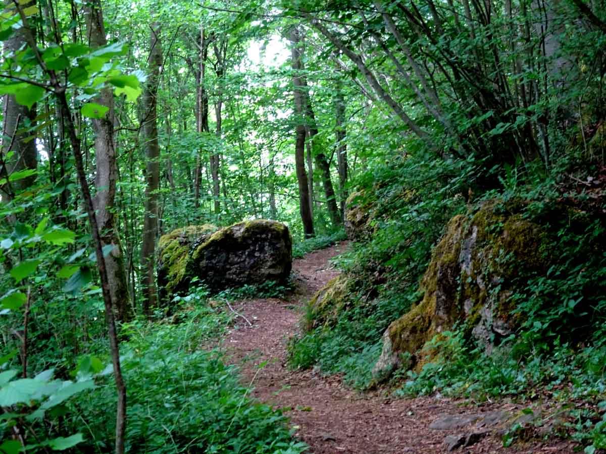 Der Felsenpfad bei Gerolstein 2
