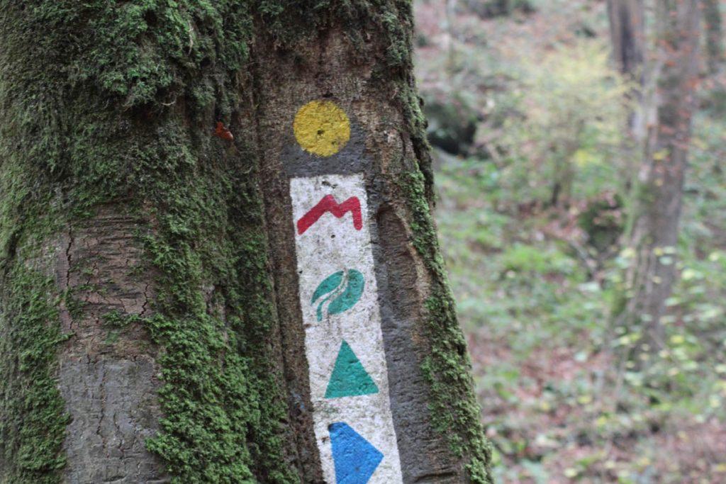 Wegmarkierung Mullerthal Trail