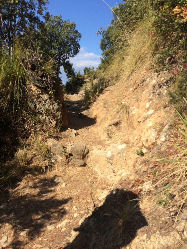 Fünf Tage zu Fuß durch die Cinque Terre - Fortsetzung 1