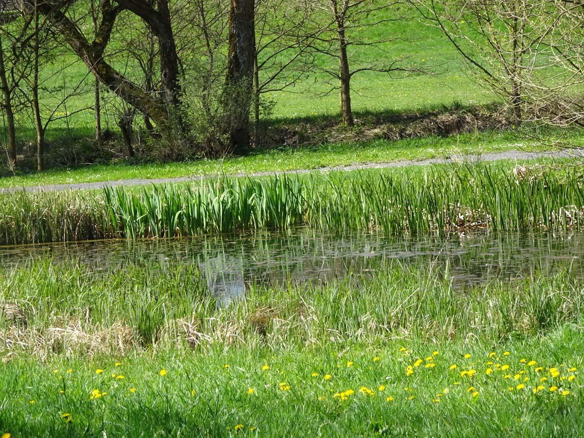 Mehrtagestour Liesserpfad Schlosspark Daun