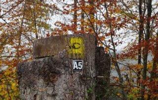Auf dem A 5 zur Krombacher Insel 1